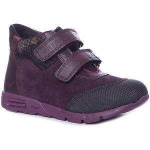 Ботинки  для девочки Dandino. Цвет: лиловый