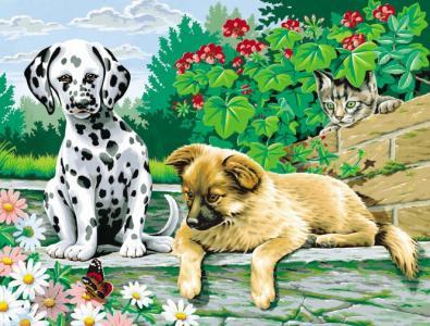 Набор для раскрашивания Две собаки Reeves