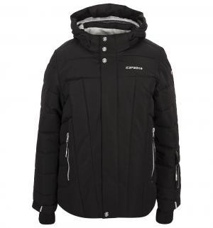 Куртка  Nixon, цвет: черный IcePeak