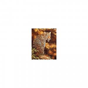 Холст с красками по номерам Грозный леопард 40х50 см Издательство Рыжий кот