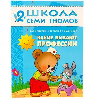 Книга развивающая Шсг «Какие бывают профессии» 2+ Школа Семи Гномов