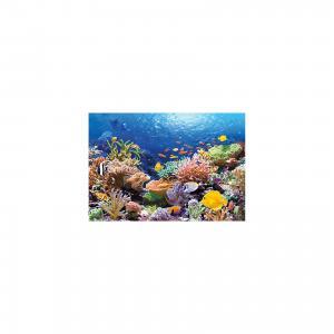Пазл Коралловый риф, 1000 деталей, Castorland