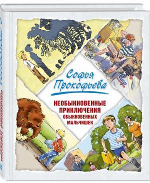 Необыкновенные приключения обыкновенных мальчишек Энас-Книга