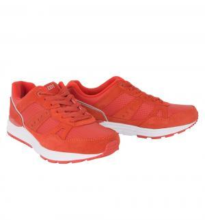 Кроссовки  Zeon, цвет: красный Ascot