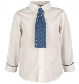 Рубашка , цвет: серый Wojcik