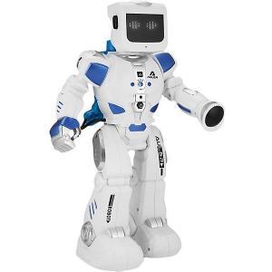 Радиоуправляемый робот  Эпсилон-Ти Zhorya