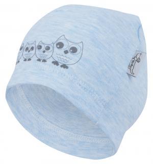 Шапка  Sowy, цвет: голубой Mirmar