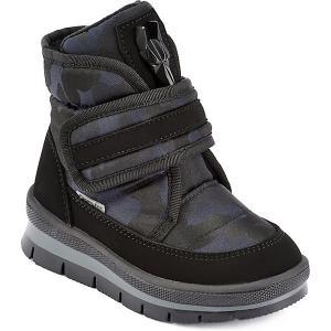 Утепленные ботинки Sector  Nebula Jog Dog. Цвет: синий/зеленый