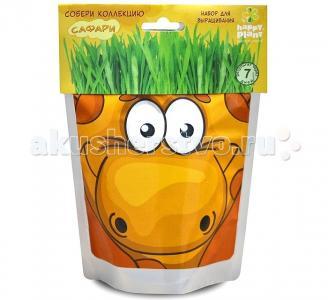 Набор для выращивания Жираф Happy Plant