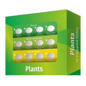 Набор микропрепаратов  LabZZ P12 Растения Levenhuk. Цвет: зеленый