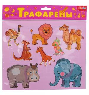 Трафареты пластиковые  Экзотические животные Дрофа