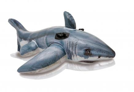 Каталка  Акула (159-530) Intex