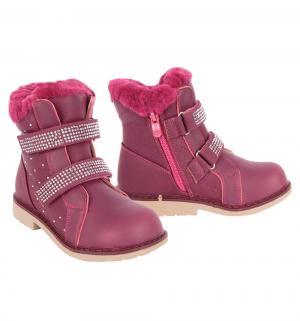 Ботинки , цвет: бордовый Сказка