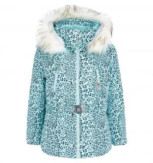 Куртка , цвет: голубой Poivre Blanc