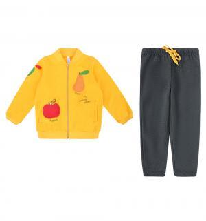 Комплект толстовка/брюки  Золотой сад, цвет: желтый Play Today