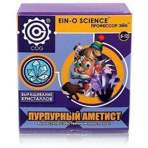 Набор для опытов  Выращивание кристаллов Пурпурный аметист Профессор Эйн. Цвет: фиолетовый