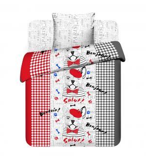 Комплект постельного белья  Бонжур, цвет: серый/красный Василек