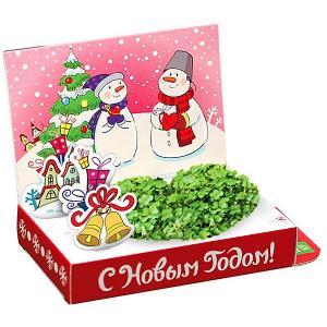 Набор для выращивания  Снеговик Любви в Новом году Happy Plant
