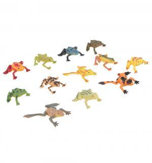 Набор фигурок  Удивительный мир животных Лягушки Tongde