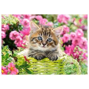 Пазл  Котёнок в саду, 500 деталей Castorland