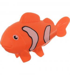 Игрушка для ванны  Заводная рыбка Умка
