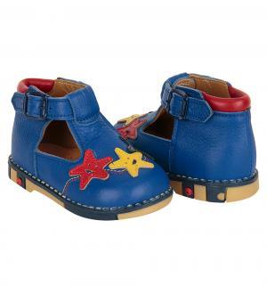 Туфли , цвет: синий Таши Орто