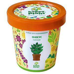Набор для выращивания Фикус райский Happy Plant