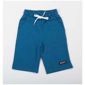 Шорты  Актив, цвет: голубой Batik