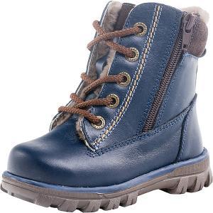 Утепленные ботинки Котофей. Цвет: синий