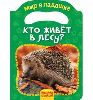 Книжка  Кто живет в лесу? 0+ Росмэн