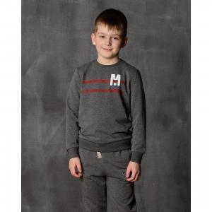 Толстовка для мальчика Modniy Juk. Цвет: серый