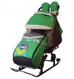 Санки-коляска  Синий зайка, цвет: зеленый Galaxy