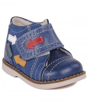 Ботинки Orsetto. Цвет: синий