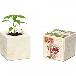 Набор для выращивания Перчик, Экокуб