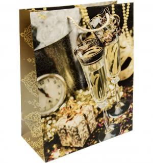 Подарочный пакет  Золотые бокал Magic Time