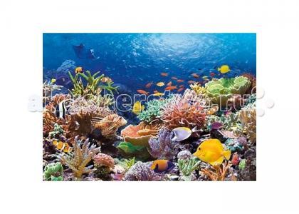 Пазл Коралловый риф 1000 элементов Castorland