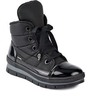 Утепленные Ботинки Sector Jog Dog. Цвет: черный