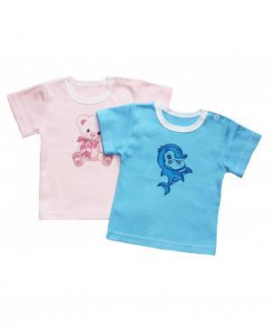 Комплект из 2-х футболок Колибри