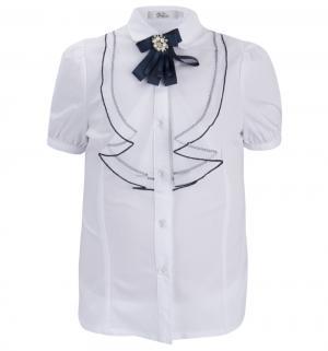 Блузка , цвет: белый/синий Deloras