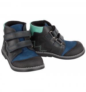 Ботинки , цвет: синий Dandino