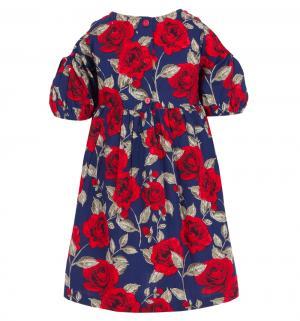 Платье , цвет: красный/синий Damy-M