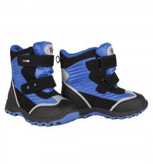 Ботинки , цвет: синий Bi&Ki