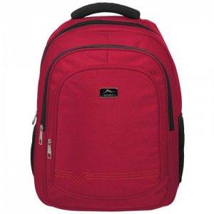 Рюкзак для старшеклассников 457x330x140 мм №1 School