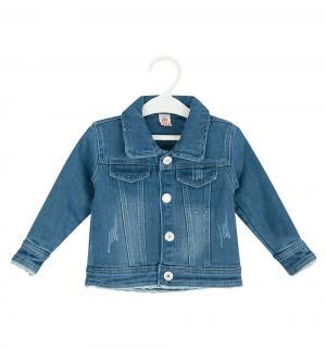 Куртка , цвет: синий Baby Pep
