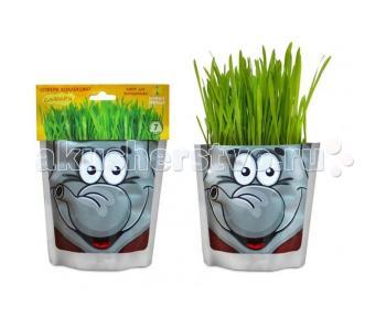 Набор для выращивания Слон Happy Plant