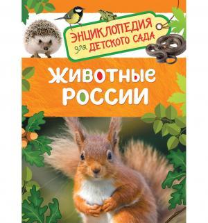 Энциклопедия  «Животные России. для детского сада» 5+ Росмэн