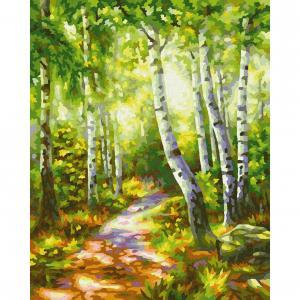 Картина по номерам  Березовый лес Schipper