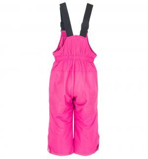 Комплект куртка/полукомбинезон , цвет: синий/розовый Zingaro By Gusti