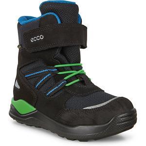 Ботинки ECCO. Цвет: schwarz-kombi