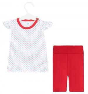 Комплект футболка/шорты  Girl, цвет: красный Aga
